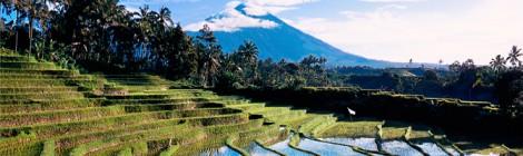 Indonesië presenteert ambitieuze cijfers