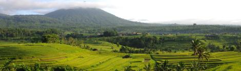Cultuurlandschap van Bali: Soebak